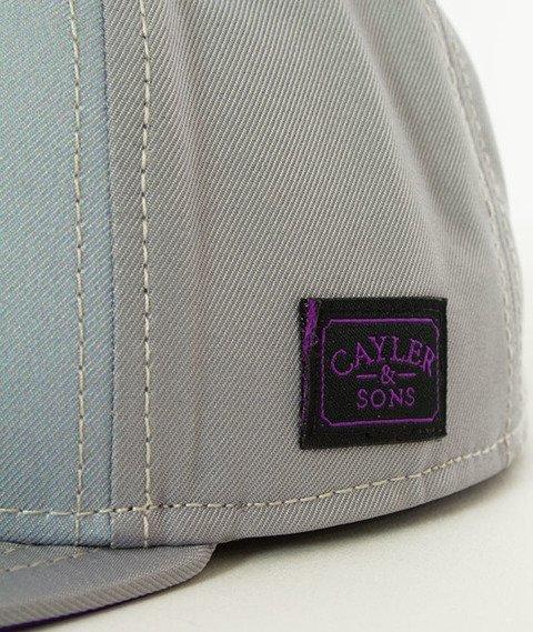 Cayler & Sons-WL Styro Snapback Grey/Purple