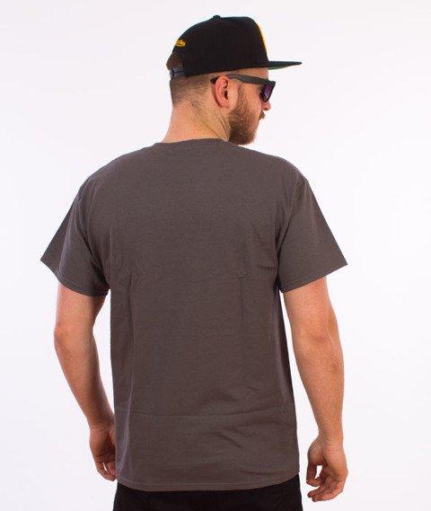Thrasher-Flame Logo T-Shirt Szary