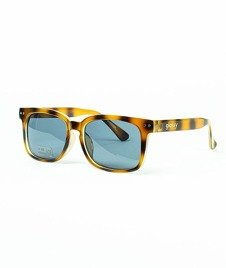 Glassy-Lox Tortoise